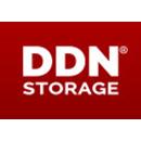DDN Storage
